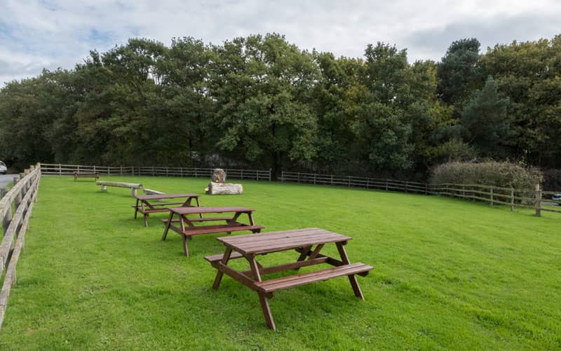 Picnic benches at lodge park in Shropshire